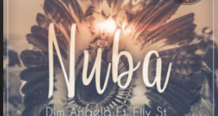 From the Artist Dim Angelo Listen to this Fantastic Spotify Song Nuba Ft Elly St